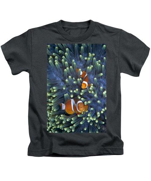 Clown Anemonefish Amphiprion Ocellaris Kids T-Shirt
