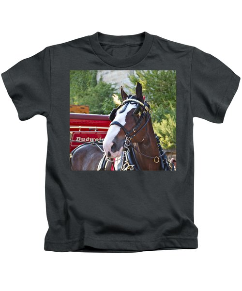 Clydesdale At Esp Kids T-Shirt