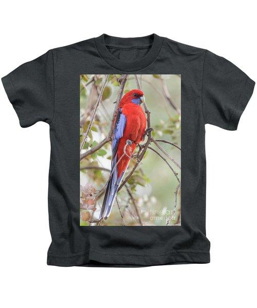 Crimson Rosella 01 Kids T-Shirt
