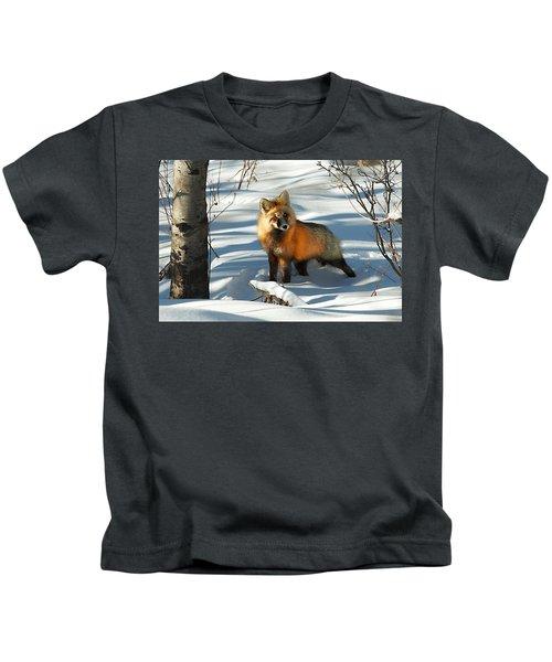 Curious Fox Kids T-Shirt
