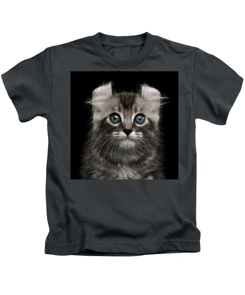Cute American Curl Kitten With Twisted Ears Isolated Black Background Kids T-Shirt
