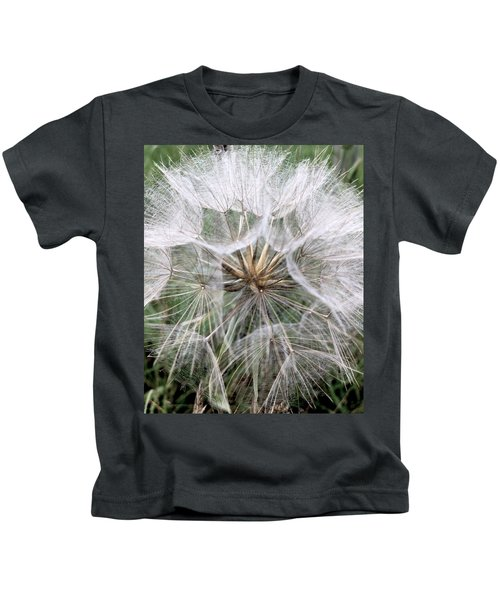 Dandelion Seed Head  Kids T-Shirt by Kathy Spall