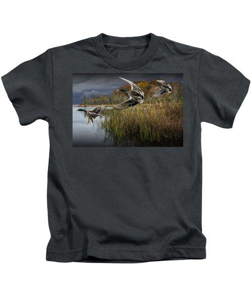 Drake Mallard Ducks Coming In For A Landing Kids T-Shirt