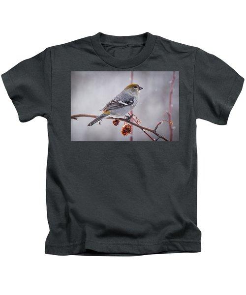 Dried Fruit Kids T-Shirt