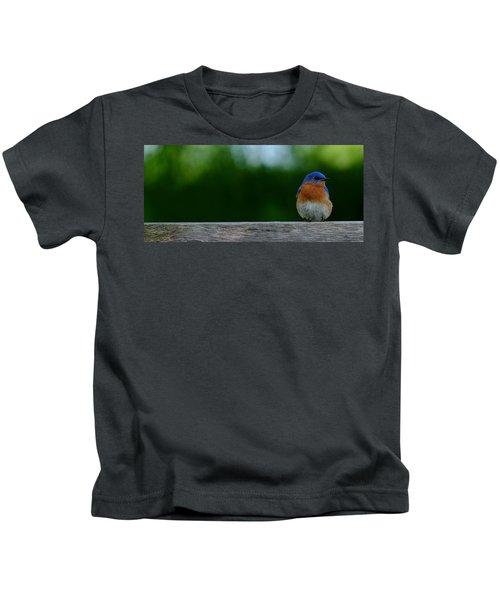 Eastern Bluebird - Male Kids T-Shirt