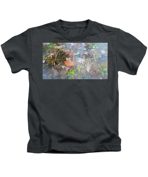 Fall Leaves In A Frozen Puddle Kids T-Shirt