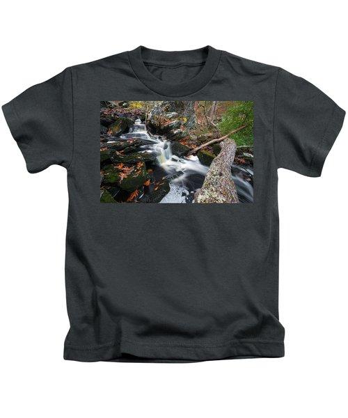 Fallen In Danforth Falls Kids T-Shirt