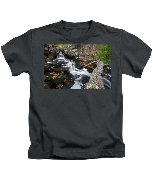 Fallen In Danforth Falls Kids T-Shirt