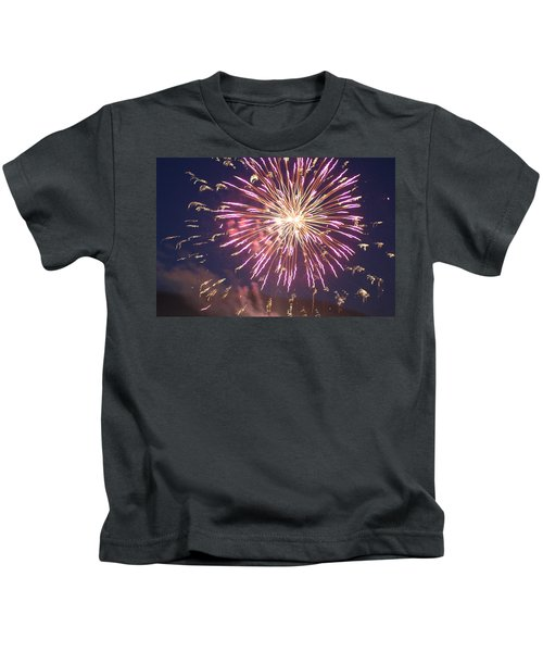 Fireworks In The Park 2 Kids T-Shirt