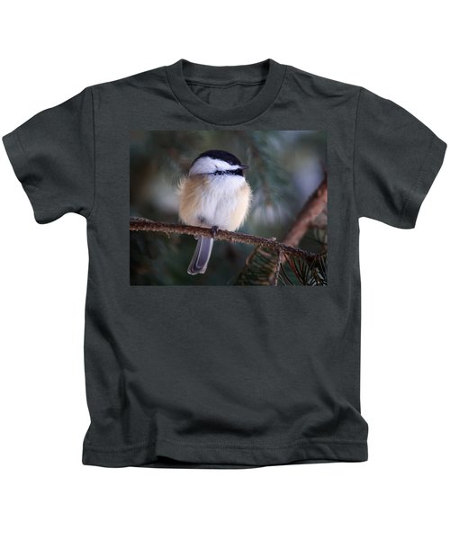Fuzzy Chickadee Kids T-Shirt