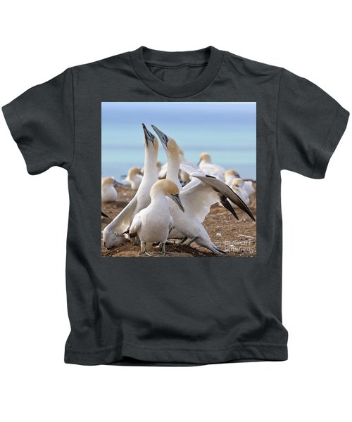 Gannets Kids T-Shirt