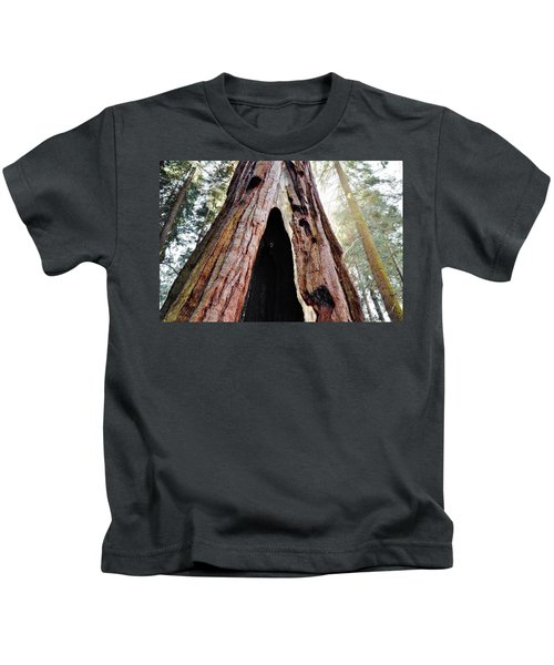 Giant Forest Giant Sequoia Kids T-Shirt