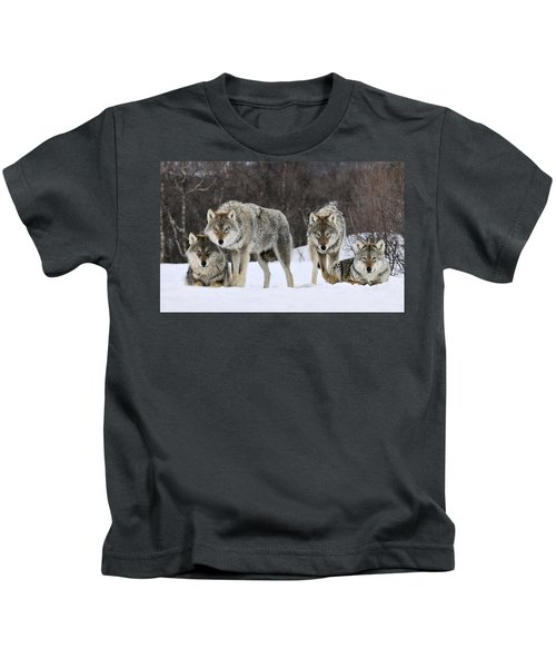 Gray Wolves Norway Kids T-Shirt