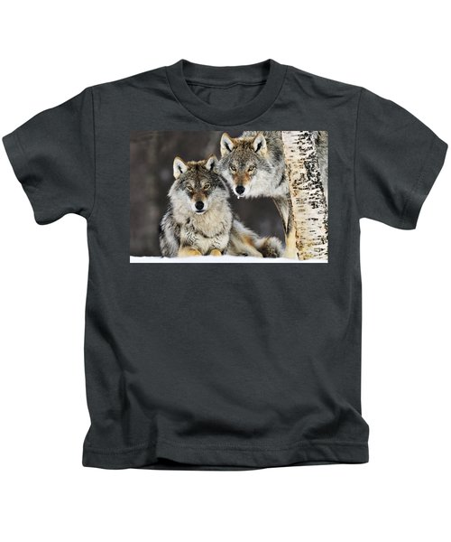 Gray Wolf Canis Lupus Pair In The Snow Kids T-Shirt
