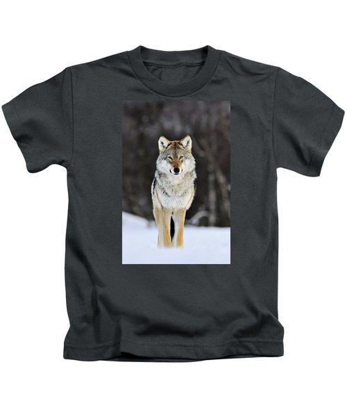 Gray Wolf In The Snow Kids T-Shirt