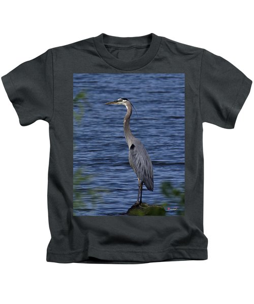 Great Blue Heron Dmsb0001 Kids T-Shirt