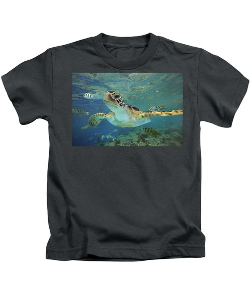 Green Sea Turtle Chelonia Mydas Kids T-Shirt