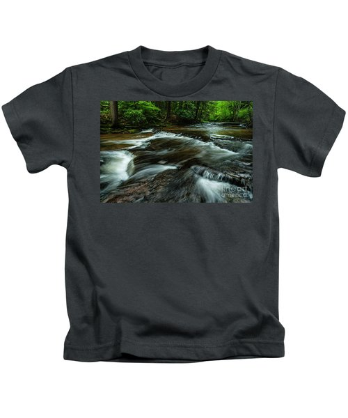 Headwaters Of Williams River  Kids T-Shirt