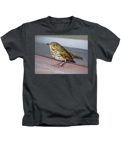 Hermit Thrush Kids T-Shirt