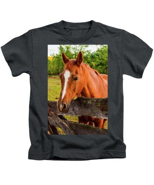 Horse Friends Kids T-Shirt