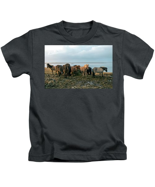 Horses In Iceland Kids T-Shirt