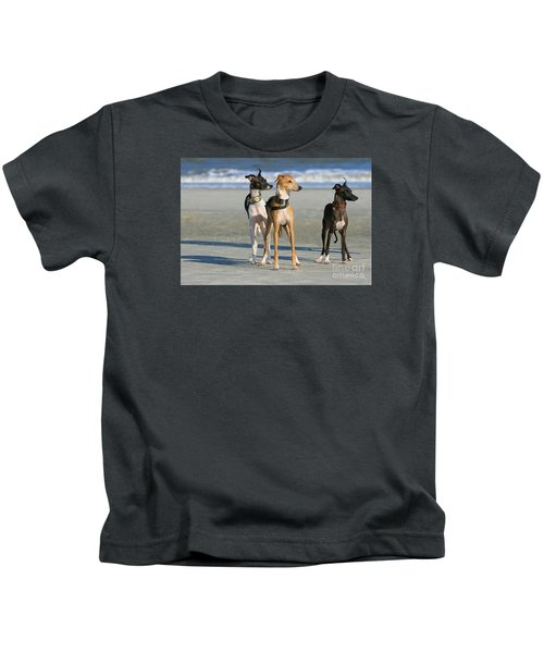 Italian Greyhounds On The Beach Kids T-Shirt