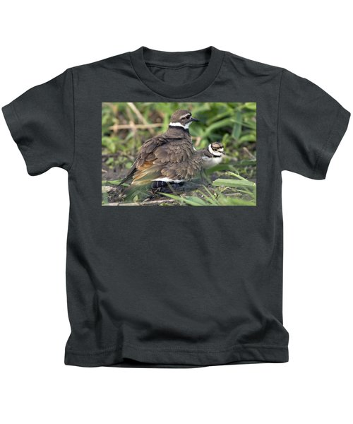 Killdeer With Chicks Kids T-Shirt by Craig Strand