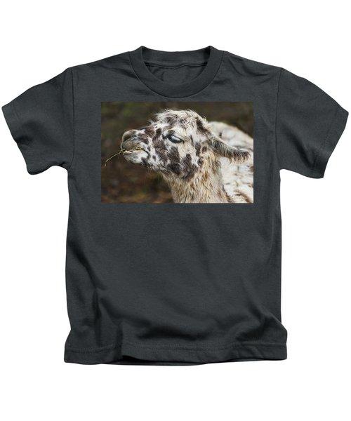 Lady Llama Kids T-Shirt
