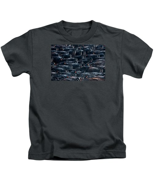 Large Herd Of Black Angus Cattle Kids T-Shirt