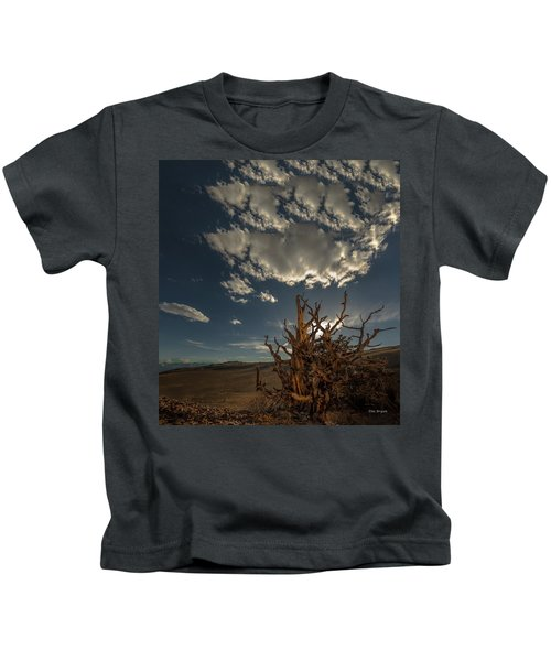 Late Afternoon In The Bristlecone Forest Kids T-Shirt