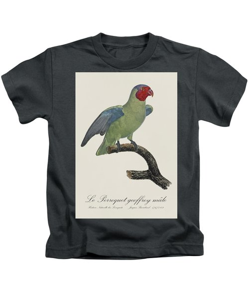 Le Perroquet Geoffroy Male / Red Cheeked Parrot - Restored 19th C. By Barraband Kids T-Shirt