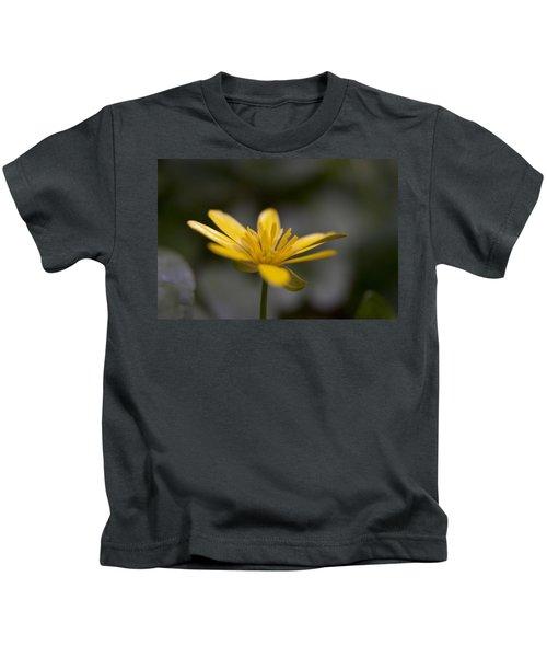 Lesser Celandine Kids T-Shirt