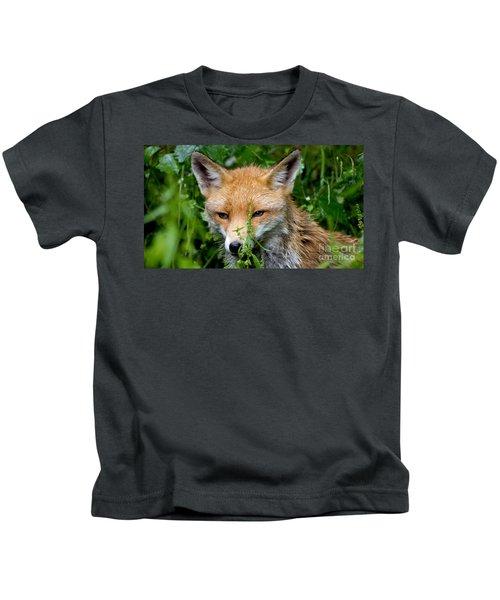 Little Baby Fox Kids T-Shirt
