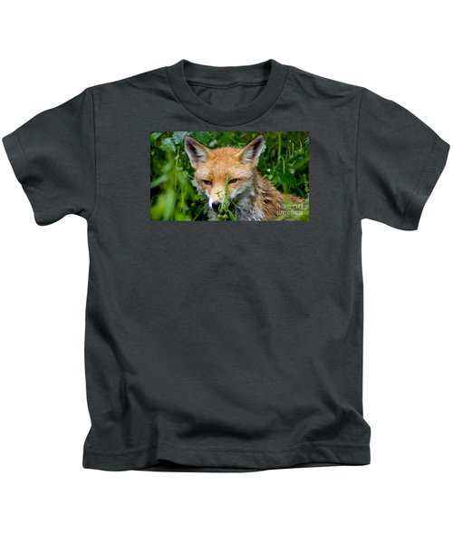 Little Baby Fox Kids T-Shirt