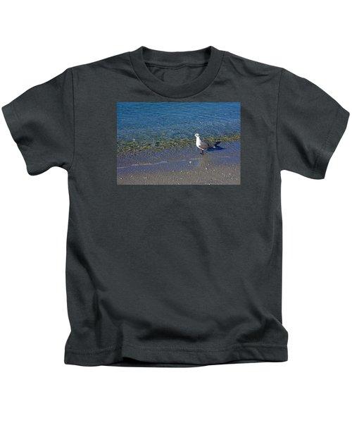 Lone Seagull At Miramar Beach In Naples Kids T-Shirt
