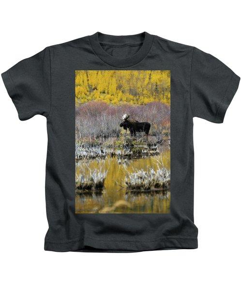 Moose In Fall Colors Kids T-Shirt