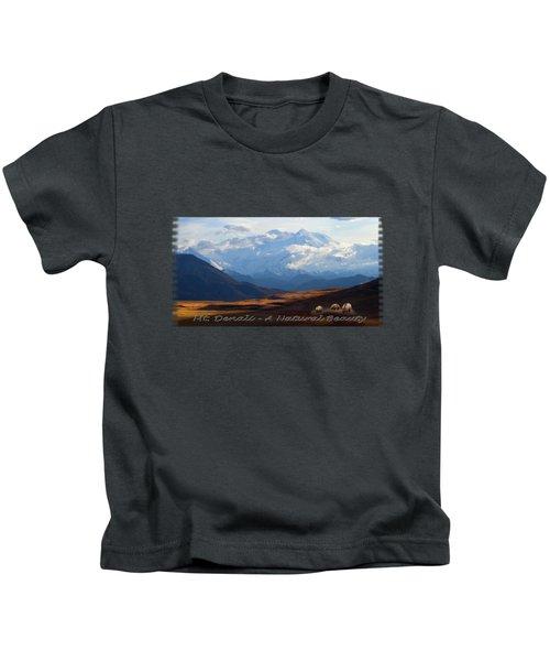 Mt. Denali National Park Kids T-Shirt