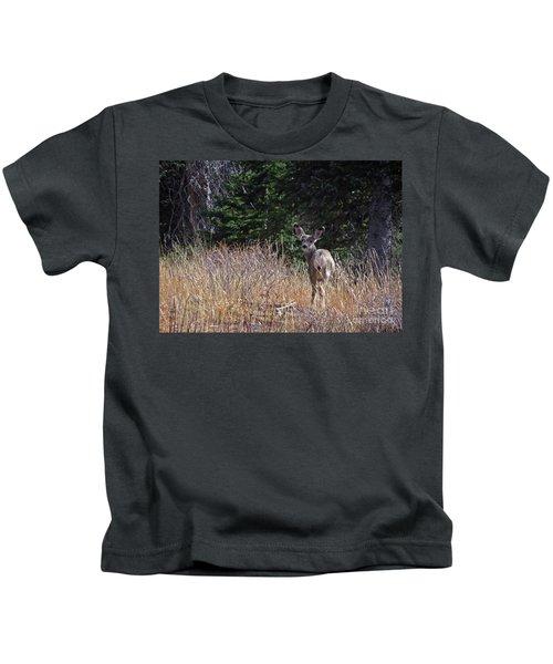 Mule Deer In Utah Kids T-Shirt