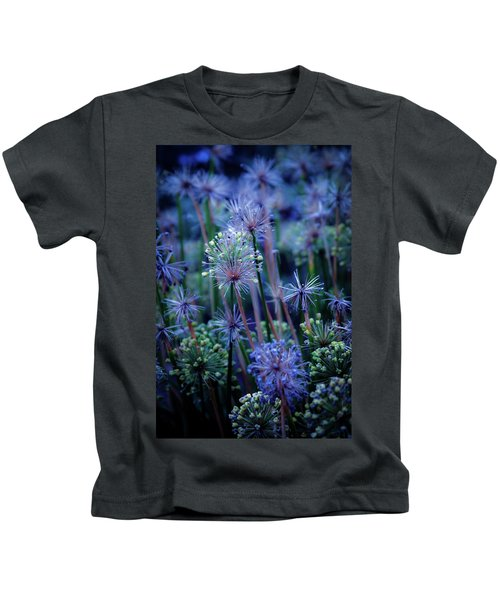 Natural Fireworks 4791 H_2 Kids T-Shirt