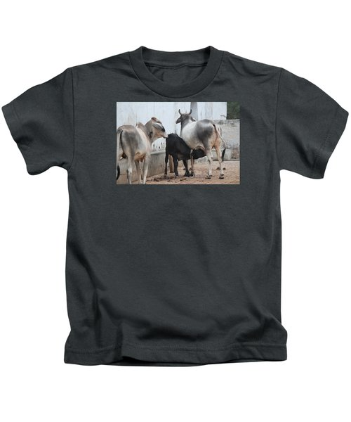 Nursing Baby Cow, Barsana Kids T-Shirt