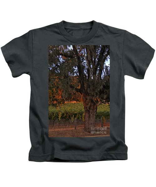 Oak Tree And Vineyards In Knight's Valley Kids T-Shirt