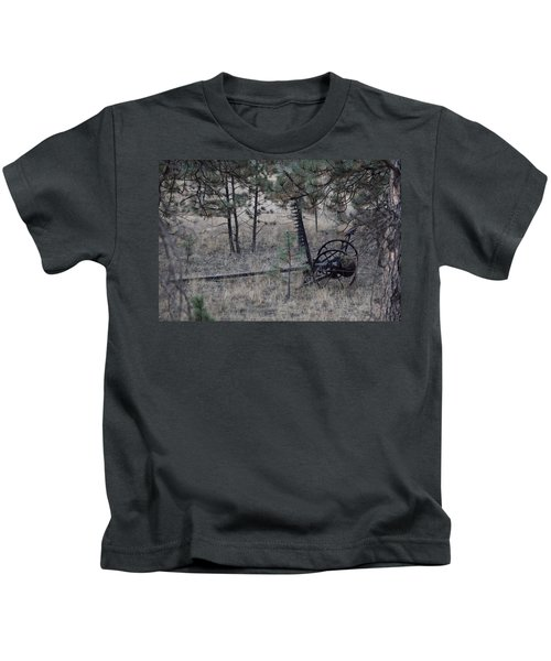 Old Farm Implement Lake George Co Kids T-Shirt
