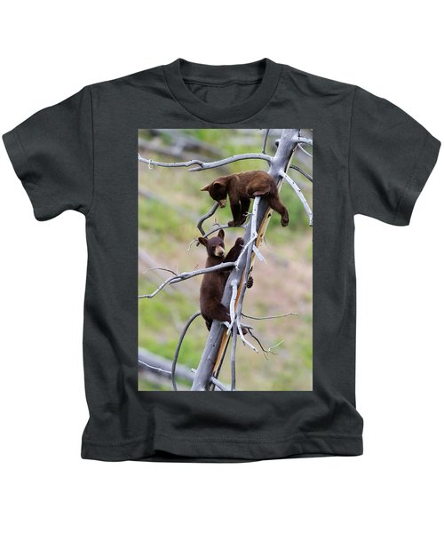 Pair Of Bear Cubs In A Tree Kids T-Shirt