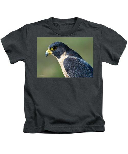 Peregrin Falcon Kids T-Shirt