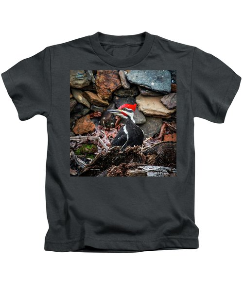 Pileated Pete Kids T-Shirt