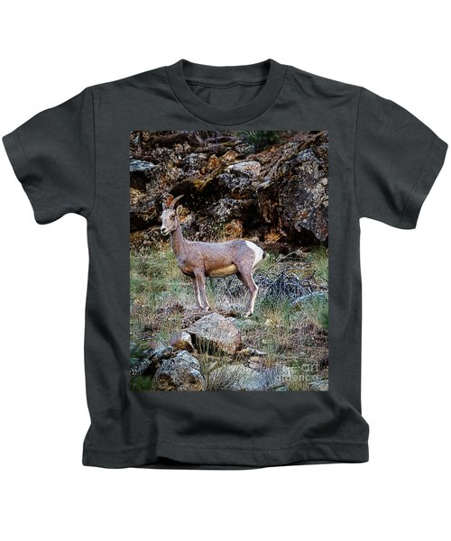 Posing Mountain Sheep Kids T-Shirt