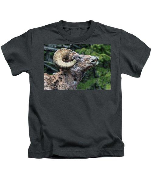 Ram Alert Kids T-Shirt