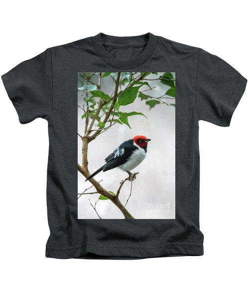 Red Capped Cardinal 2 Kids T-Shirt