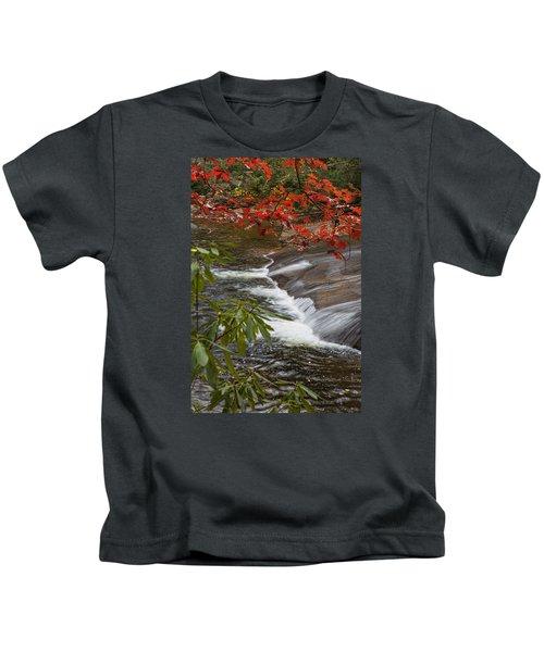 Red Leaf Falls Kids T-Shirt