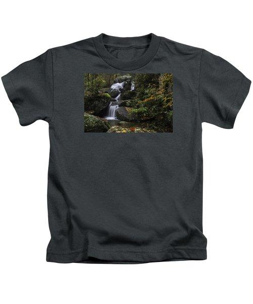 Red Leaf Waterfalls Kids T-Shirt